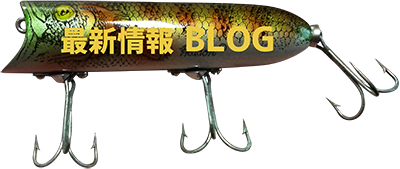最新情報ブログ
